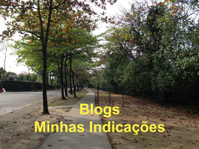 Blog – Minhas Indicações